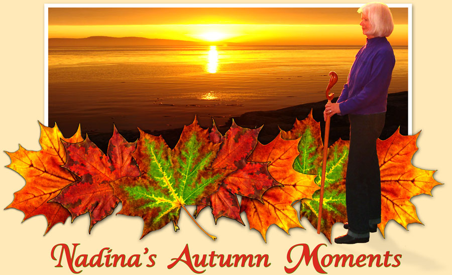 Nadina Autumn Moments